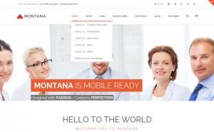 Montana Home Variation